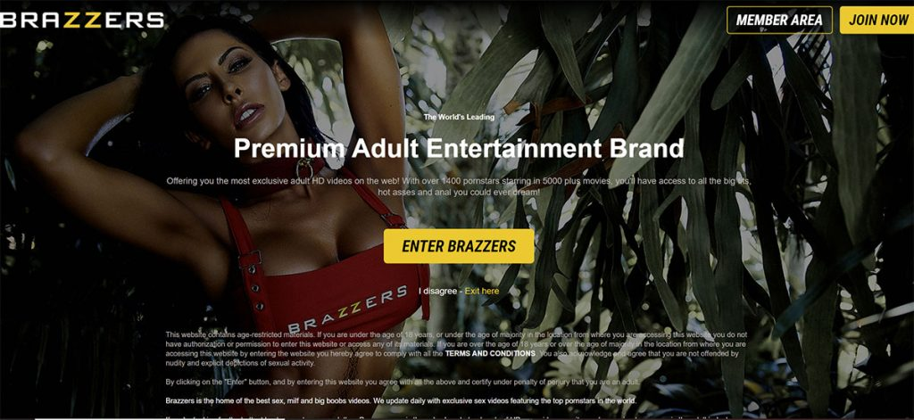 Enter Brazzers Warning Page